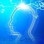 脳の健康を守るホスファチジルセリンの効果とは?
